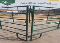 China 12ft Galvanized Corral Fence Panels , Temporary 5′ And 6′ Tall Metal Corral Fencing company