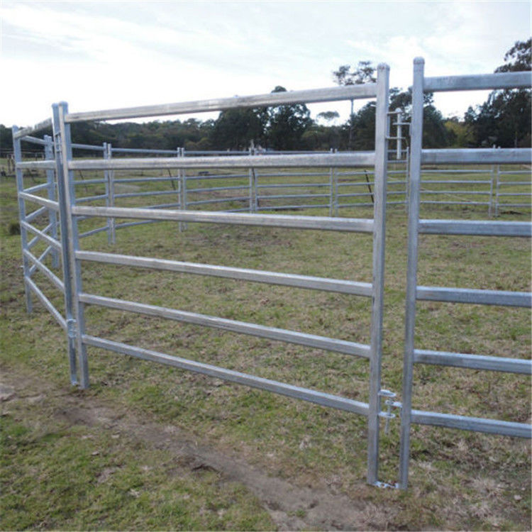6ft Height Galvanized Round Pen Corral Fence Panels For Cattle & Horse