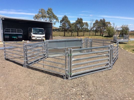China Australia Standard Corral Fence Panels , Horse Corral Fencing For Livestock factory