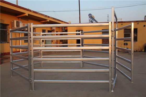China 1.8x2.1m Corral Fence Panels 6 Rails Oval 40x80mm 50mm*50mm Galvanized Square Tube factory