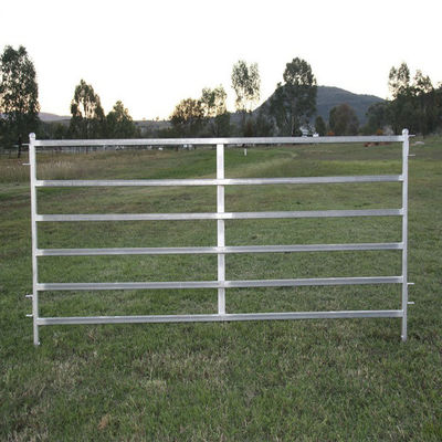 China 1800 X 2100mm Corral Fence Panels 40 X 40mm /50 X 50mm RHS X 1.6mm /2.0mm factory
