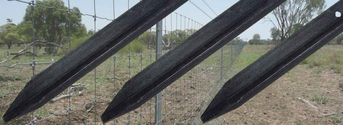Strong Hot Dippd Galvanized Metal Star Picket For Cattle Mesh Anti - Rust Surface